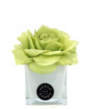 Diffuseur de Parfum Fleur Couture